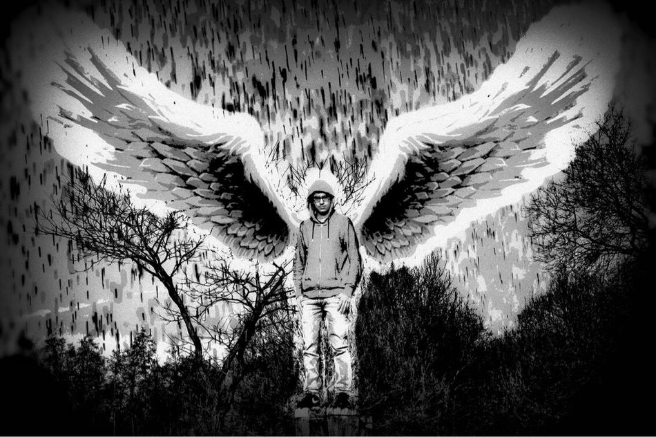 Some nice angel wings✌️ Angel Wings First Eyeem Photo