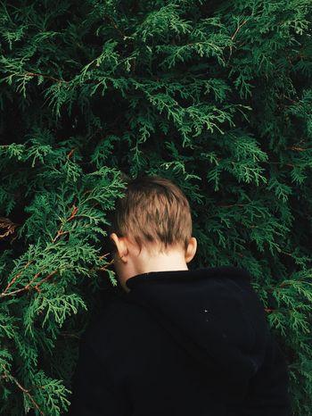 Hide and seek // Rear View One Person Real People Plant Outdoors Headshot Tree Day People Adult Nature Hide And Seek Hideandseek Kids Being Kids Kid Lost In The Landscape