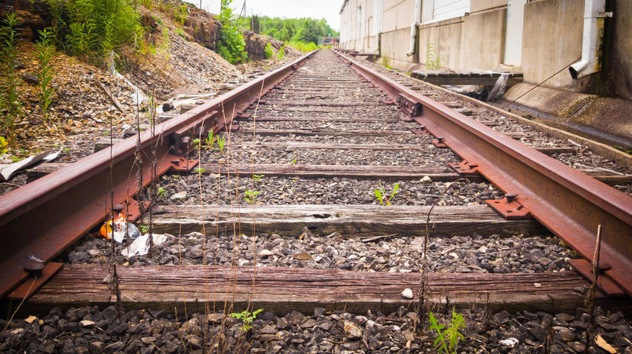 Railroad Track Rail Transportation Built Structure Abandoned Abandoned Building Abandoned Places Overgrown Places Overgrown Overgrown And Beautiful Outdoors No People Architecture Beauty In Nature
