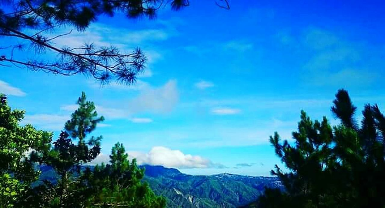 43 Golden Moments On The Way Adventure Club Scenery Photography Landscape_photography Nature PhotographyMountains And Sky Sky And Clouds Sky PhotographyTop View Mt. Ulap Itogon Benguet Philippines Showcase July