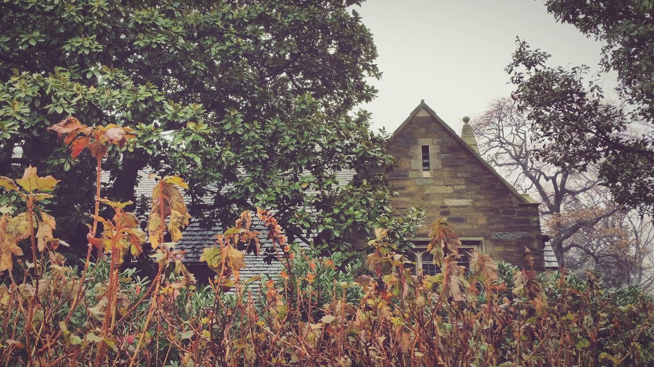 Winter cottage // Mobilephotography Droidography NEM Landscapes EyeEm 5.0