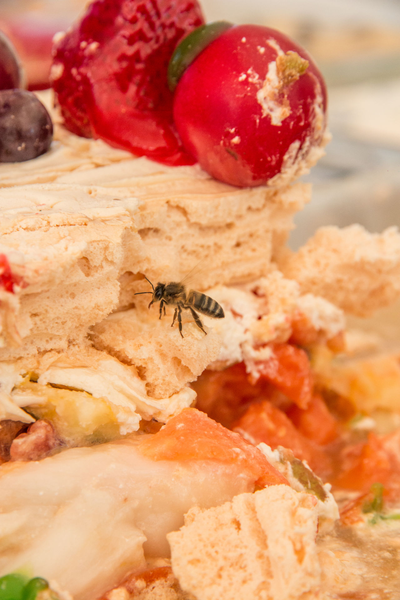 Bees Bees In Dessert Close-up Dessert Food Food And Drink Freshness Iza Iza Boyaca No People Ready-to-eat