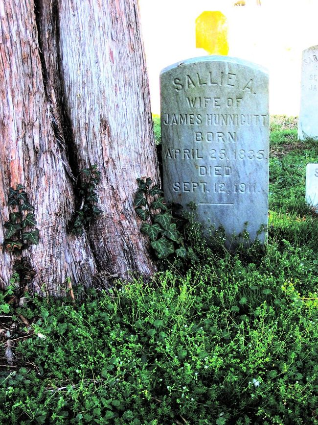 Old gravestone, Lawnes Creek Parish Church and Cemetery, Surry County, VA Beauty In Nature Close-up Day Goth Grass Grave Graveyard Graveyard Beauty Green Green Color Growing Growth Lush Foliage Moss Nature No People Outdoors Plant Tranquility