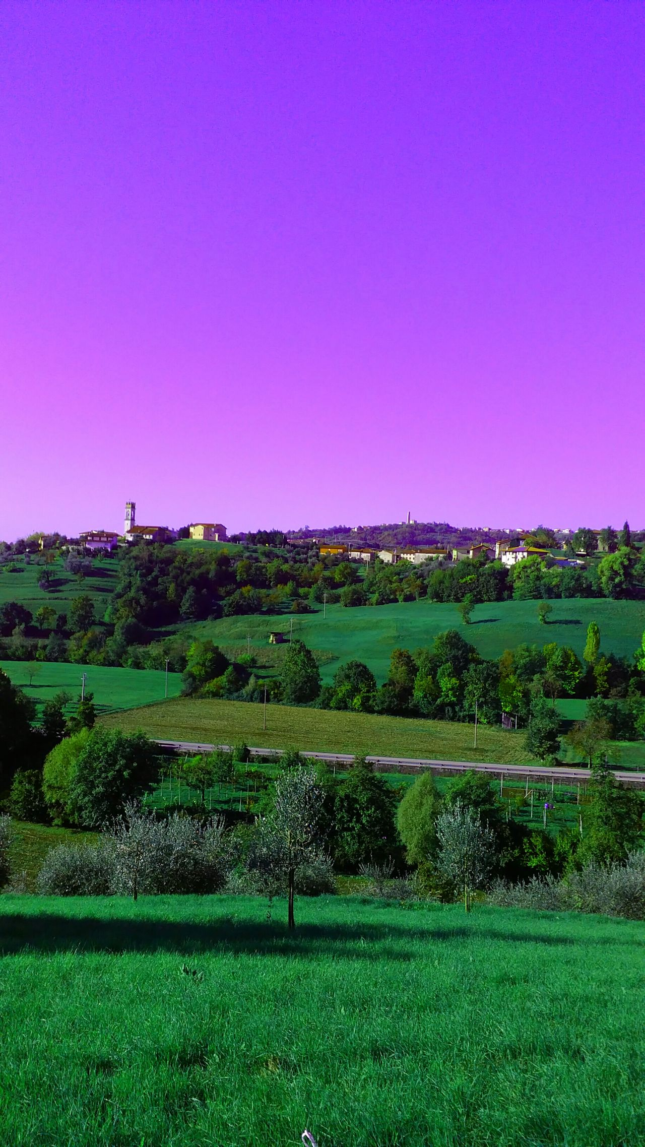 Agriculture Architecture Beauty In Nature Clear Sky Copy Space Day Field Green Color Growth Landscape Nature No People Outdoors Rural Scene Scenics Sky Tranquil Scene Tranquility Tree Landscape_photography Veneto Italy Hillscape Village Scape. Hills And Valleys Nature_collection Grassfield