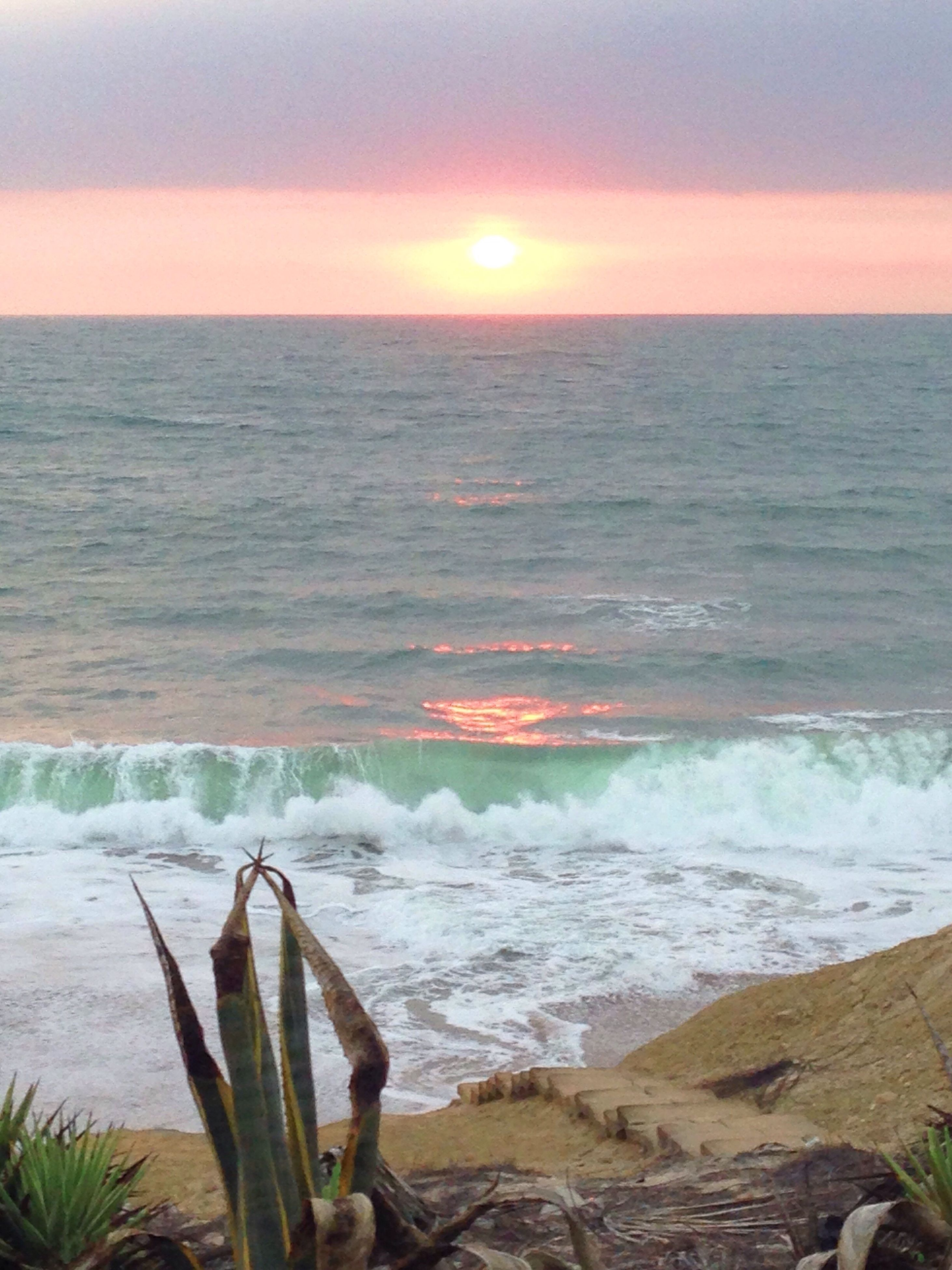 sea, nature, beauty in nature, water, scenics, horizon over water, sunset, tranquil scene, sky, no people, tranquility, outdoors, beach, wave, tree, day