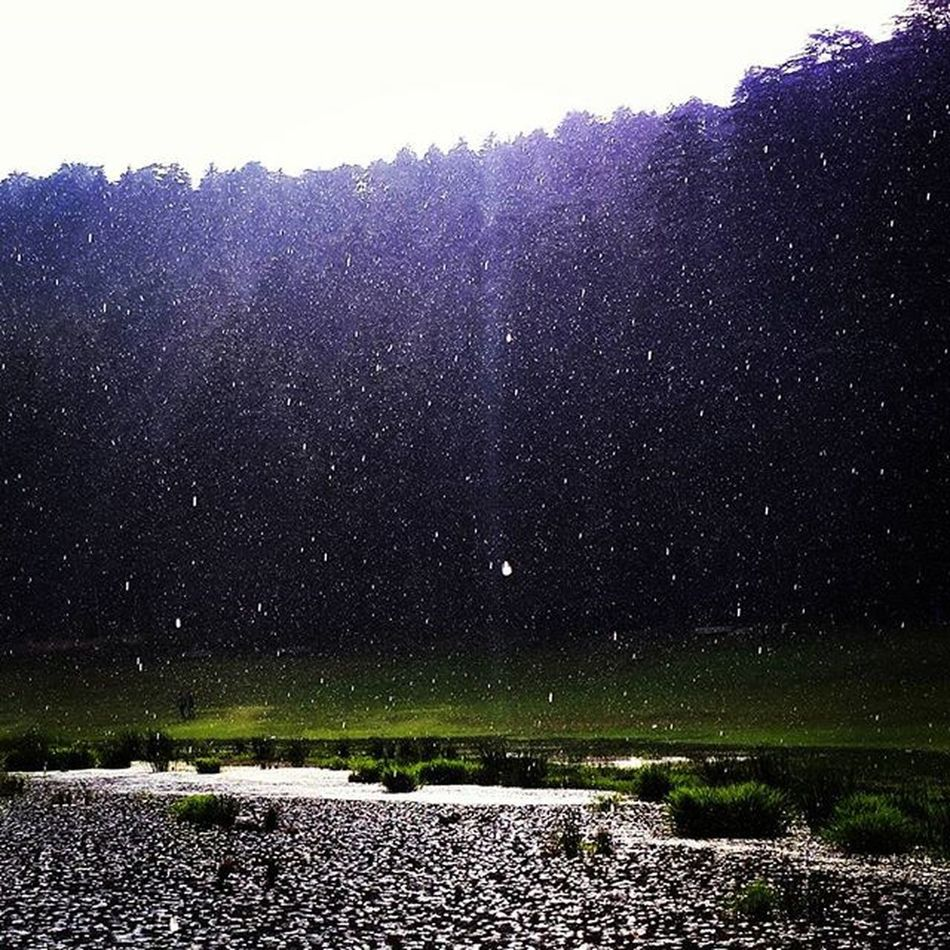 Craving to be there. The mesmerizing view still has impact on my mind. Capturing the rain drops in my camera was another triumph. Itraveliclick India_and_me Aroundtheworld Instagram Traveldiary Travelgram Traveldiaries Indiagram Ip_meet Followforfollow Followme Friends Hill Rain Mountains Travel _oye _soi TBT  Throwback Photography Photographer Bulleters Beauty Igers cute fit fitnessaddict happy adventure ip_meet