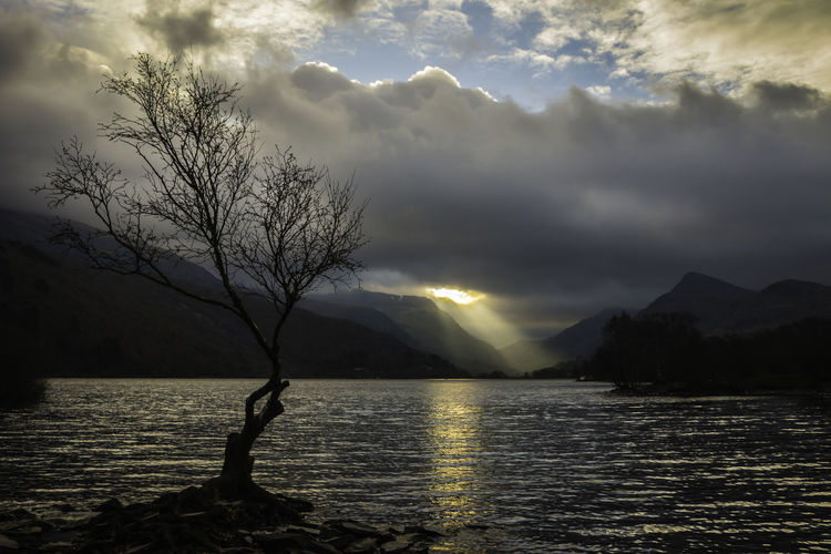 Sunrays, Llyn Padarn Andy Beattie Andy Beattie Photography Bare Tree Beauty In Nature Cloud - Sky Day Landscape Mountain Nature No People Outdoors Scenics Sky Tree Wales Water