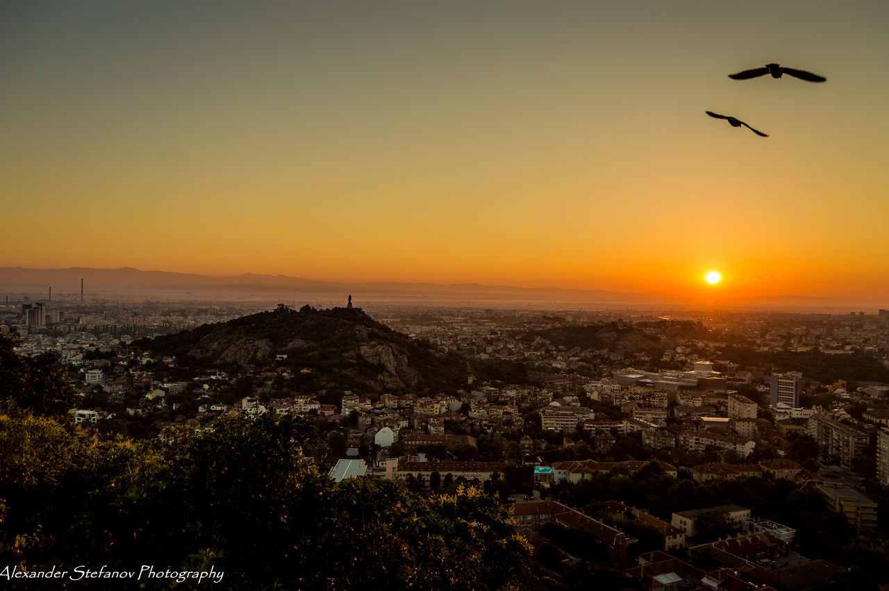 Sunrise in Plovdiv Animal Themes Architecture Beauty In Nature Bird Birds In Frame Building Exterior Built Structure City Cityscape Clear Sky Day Dusk Flying Hills Journey Mountain Nature No People Outdoors Plovdiv, Bulgaria Plovediv Silhouette Sky Sunrise Sunset First Eyeem Photo