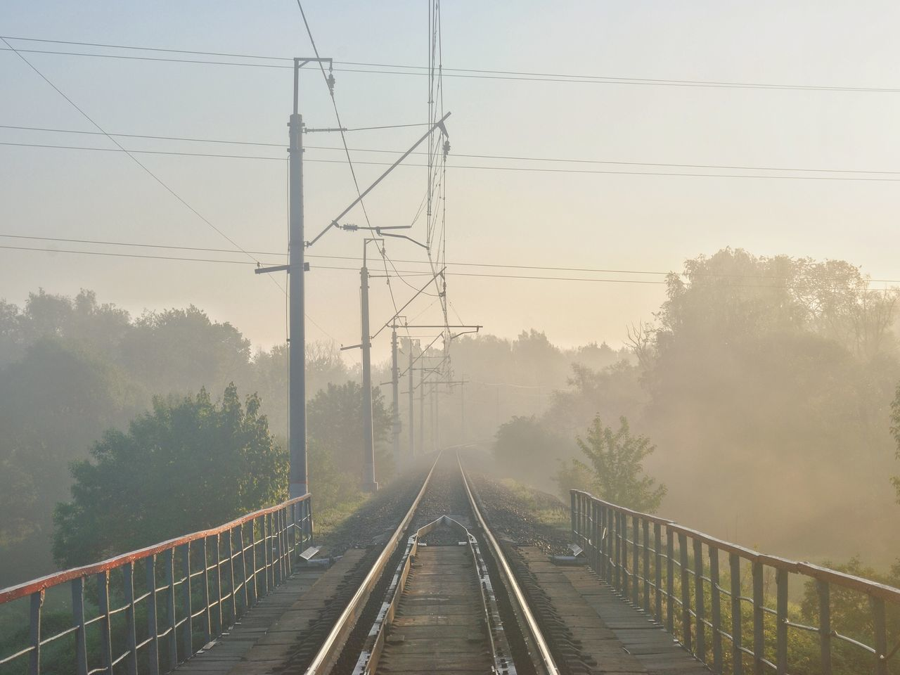 Cable Connection Diminishing Perspective Electricity  Electricity Pylon Foggy Morning Haze Hazy  Morning Morning Light Nature No People Outdoors Perspective Power Line  Power Supply Railing Railroad Track Sky The Way Forward Transportation Tree Vanishing Point Live For The Story Sommergefühle