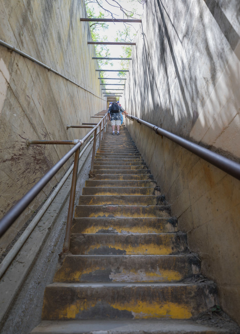 Stair Climbing on Diamond Head, Oahu, Hawaii Adult Architecture Built Structure Climbing Day Hand Rail Hawaii Low Angle View One Person Outdoors People Railing Rails Real People Staircase Stairs Steps Steps And Staircases The Way Forward USA Walking