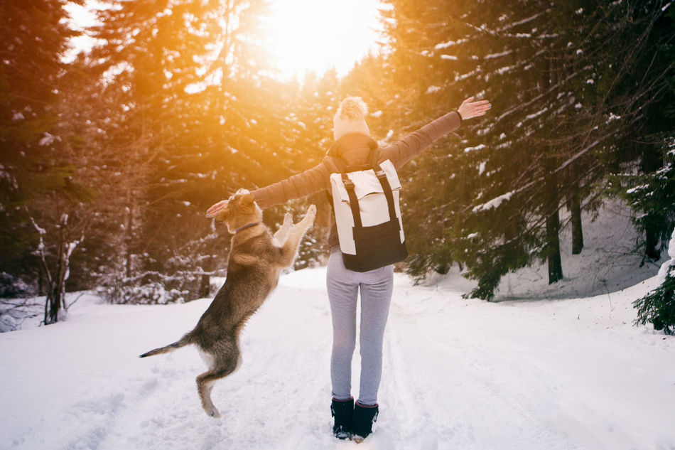 Beautiful stock photos of freundschaft,  Animal Themes,  Arms Outstretched,  Backpack,  Beauty In Nature