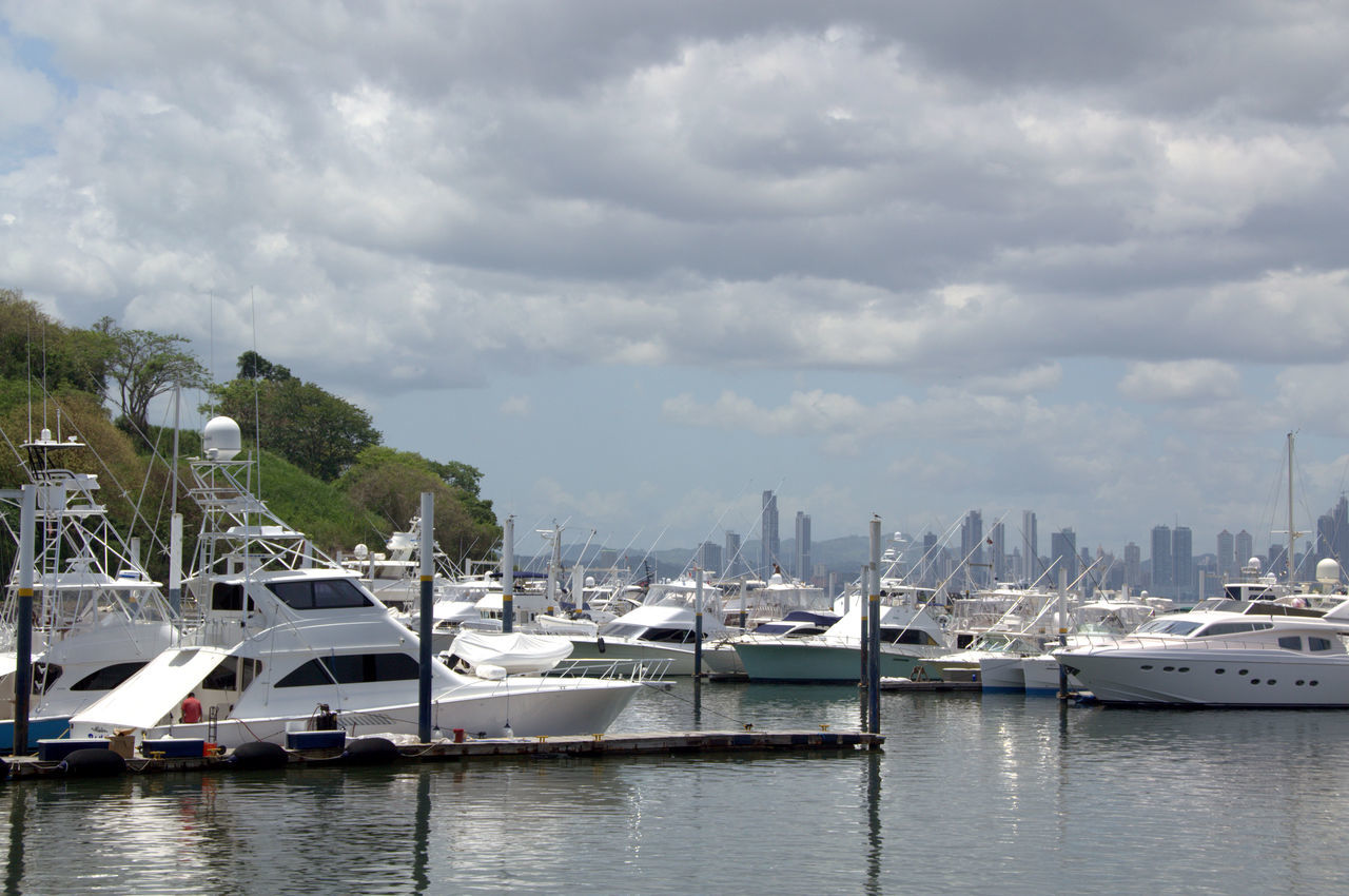 Marina at Panama City, Panama City Cityscape Cloud - Sky Day Harbor Moored Nature Nautical Vessel No People Outdoors Pedal Boat Recreational Boat Sailboat Sea Sky Travel Destinations Tree Vacations Water Yacht Yachting First Eyeem Photo