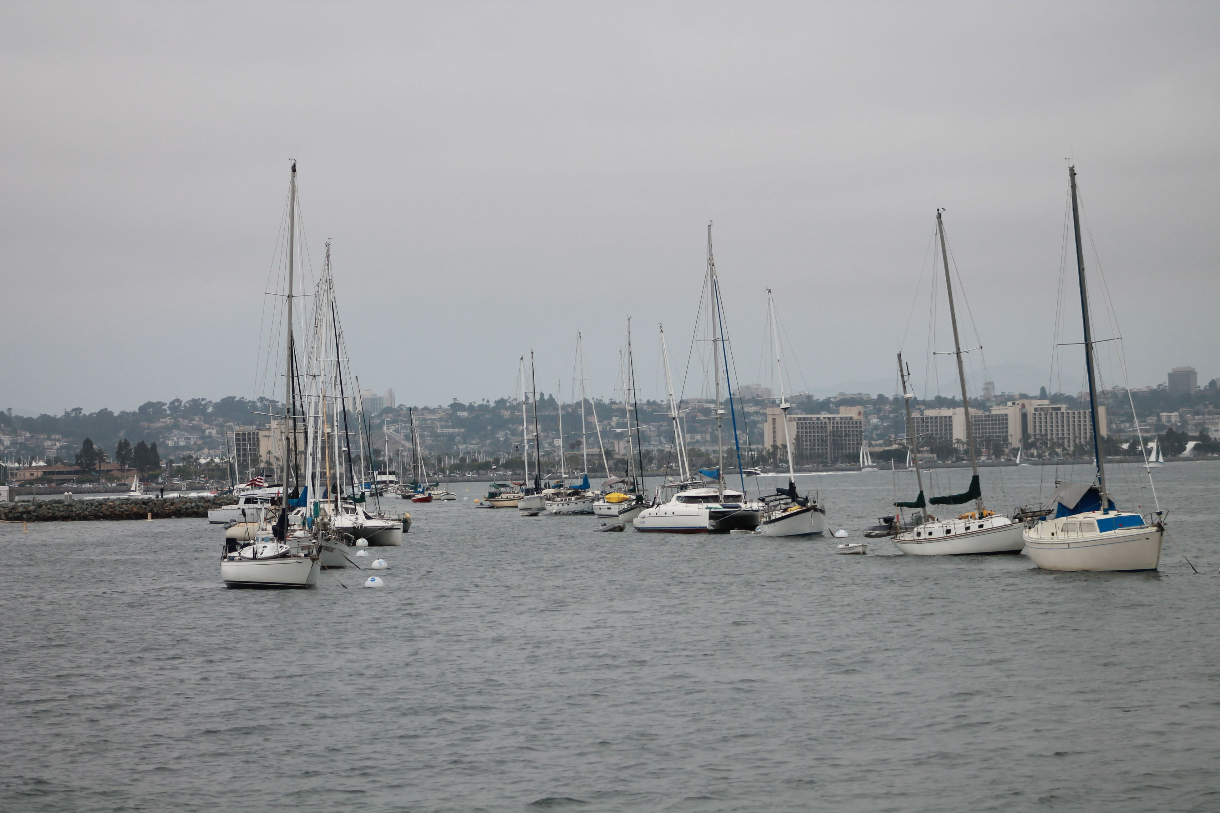 Sail Away Beautiful Day Beautiful Sail Boats Beauty Of The Bay Relaxing Sail Boats San Diego In Background Summer Time Get Together