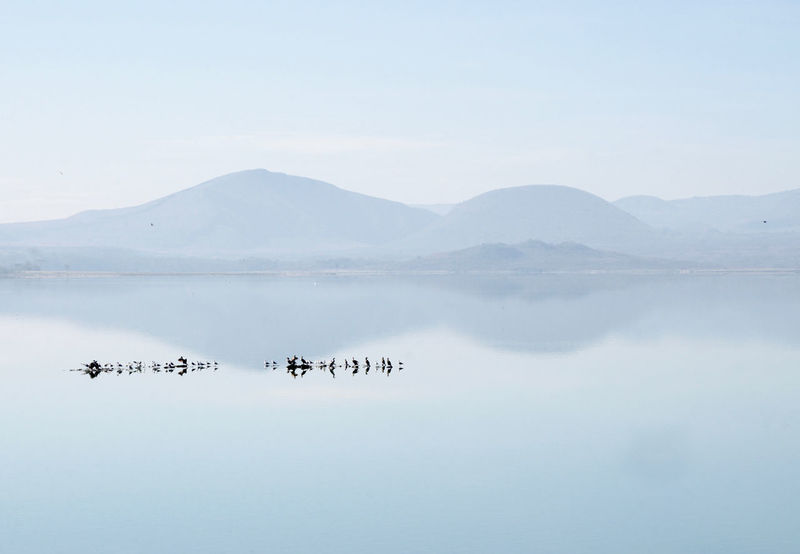 Picture taken at Lake Elementaita, Kenya Animal Themes Beauty In Nature Bird Birds Blue Day Kenya Lake Lights Mountain Mountain Range Nature No People Outdoors Reflection Scenics Sky Tranquility Water Perspectives On Nature