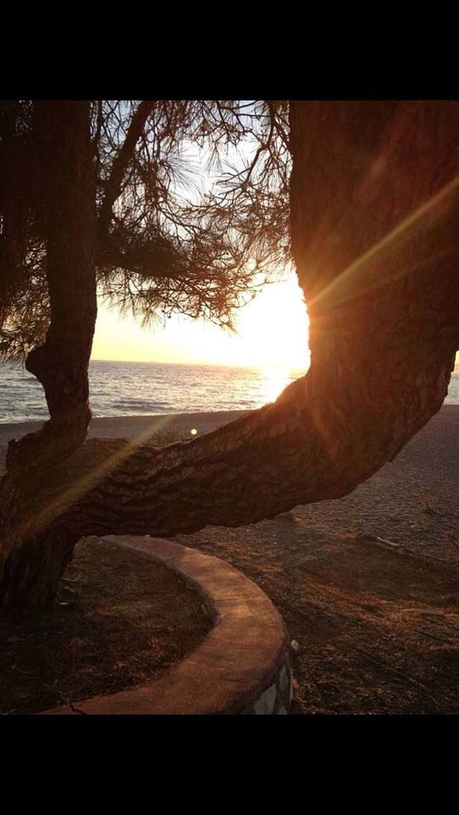 Izmir Gümüldür Gertur Sitesi Sun Sun Light