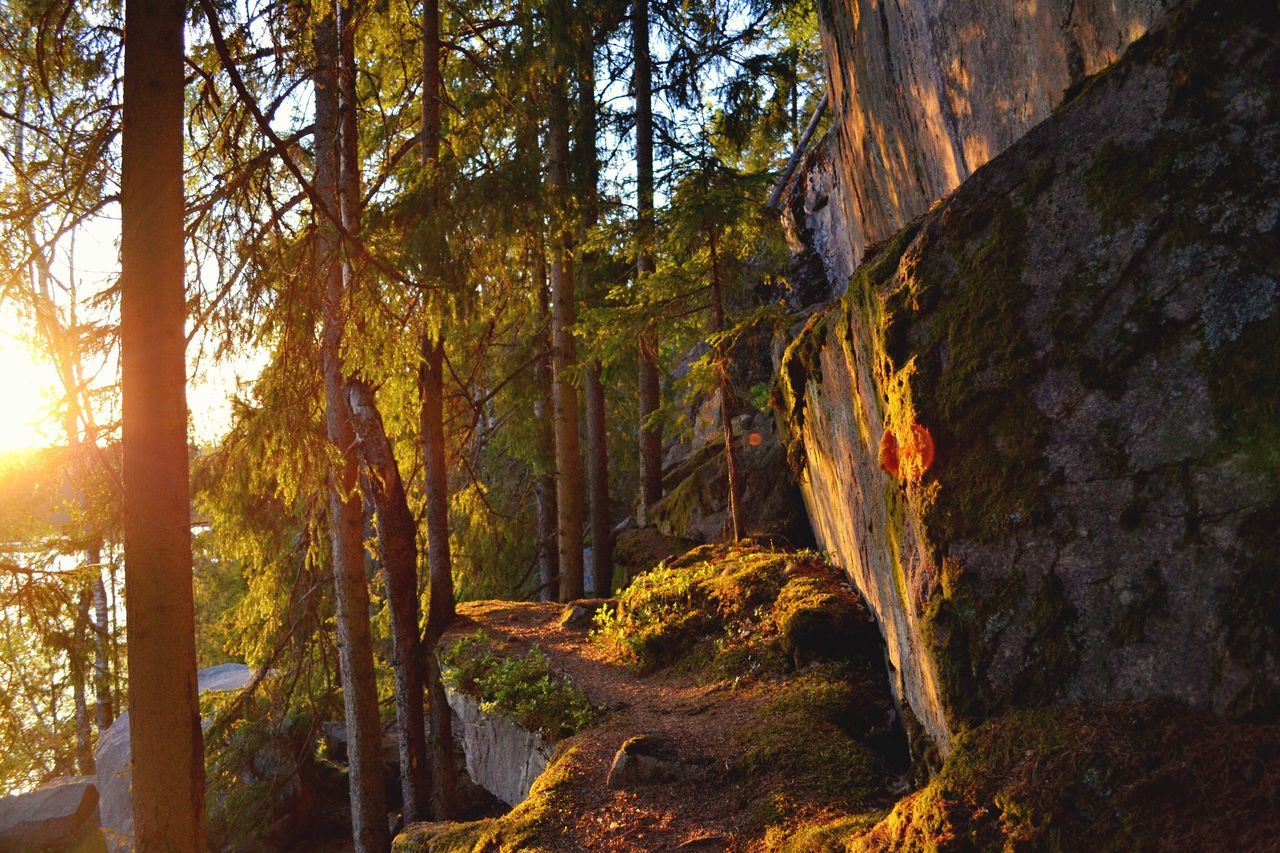 The Great Outdoors - 2017 EyeEm Awards Landscape Mountain Mountains Beauty In Nature Beautiful Nature Rock - Object Rocks Sunset Sweden Europe Travel Destinations Scenery Scenics Scenic Summertime Sunlight