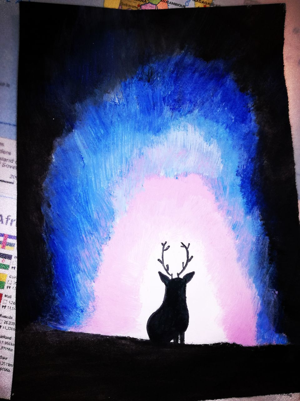 silhouette, multi colored, no people, indoors, animal themes, nature, day, sky