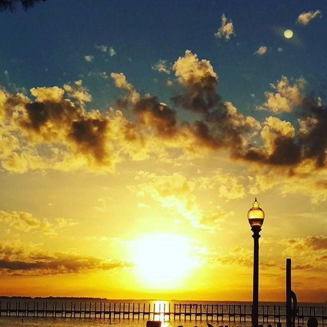 Here's tonight's Sunset Colorful Beautiful Sky Navarre LoveFl Emeraldcoast Emeraldcoasting HTCOneM9 Htconelife Oneography 20 .7mp @htc @HTCUSA @HTC_UK @HTCelevate @HTCMEA @HTC_IN @HTCIreland @HTCCanada @HTCMalaysia @htcsouthasia @htcfrance TeamHTC @sharealittlesunshine @pureflorida Christmascelebration