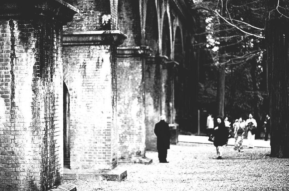 まだ今年は終わらない Nanzen-ji Suirokaku Kyoto,japan Bw_collection Black And White Carl Zeiss EyeEm Gallery Pentax K-5 Planar50/1.4 TENPLES Blackandwhite BW Collection
