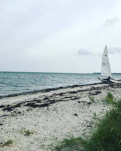 Beach Sea Sailboat Boat Water Sky Nature Scenics Beauty In Nature Outdoors Adventure Sailing Blue Blue Water Seaweed Colors Peace Peaceful