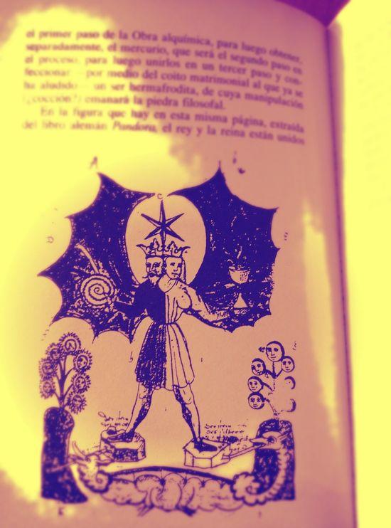 Book Alquimia Alquimia Mental Misticismo Esoterismo Esoteric Libre Pensamiento Reading