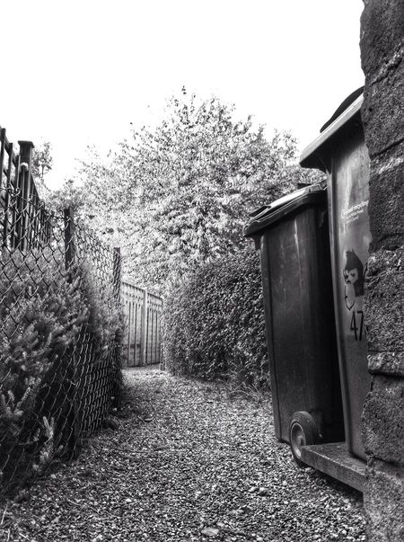 Tree Built Structure Outdoors Day Plant No People Architecture Nature Path Gravel Garden Urban Exploration Black & White Monochrome Photography England Rubbish Bins Pathway