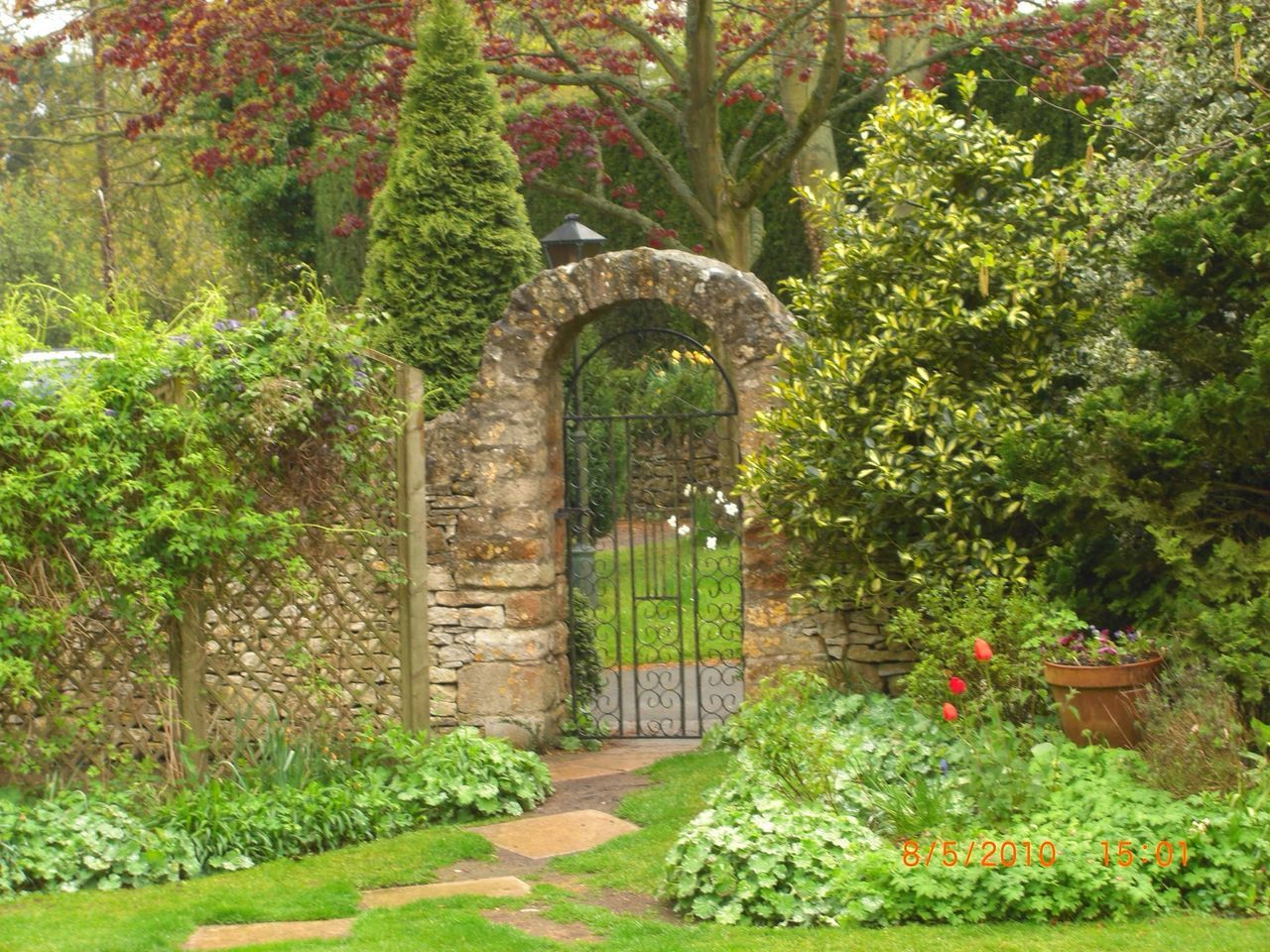 plant, arch, growth, flower, tree, flowerbed, outdoors, day, nature, no people, architecture