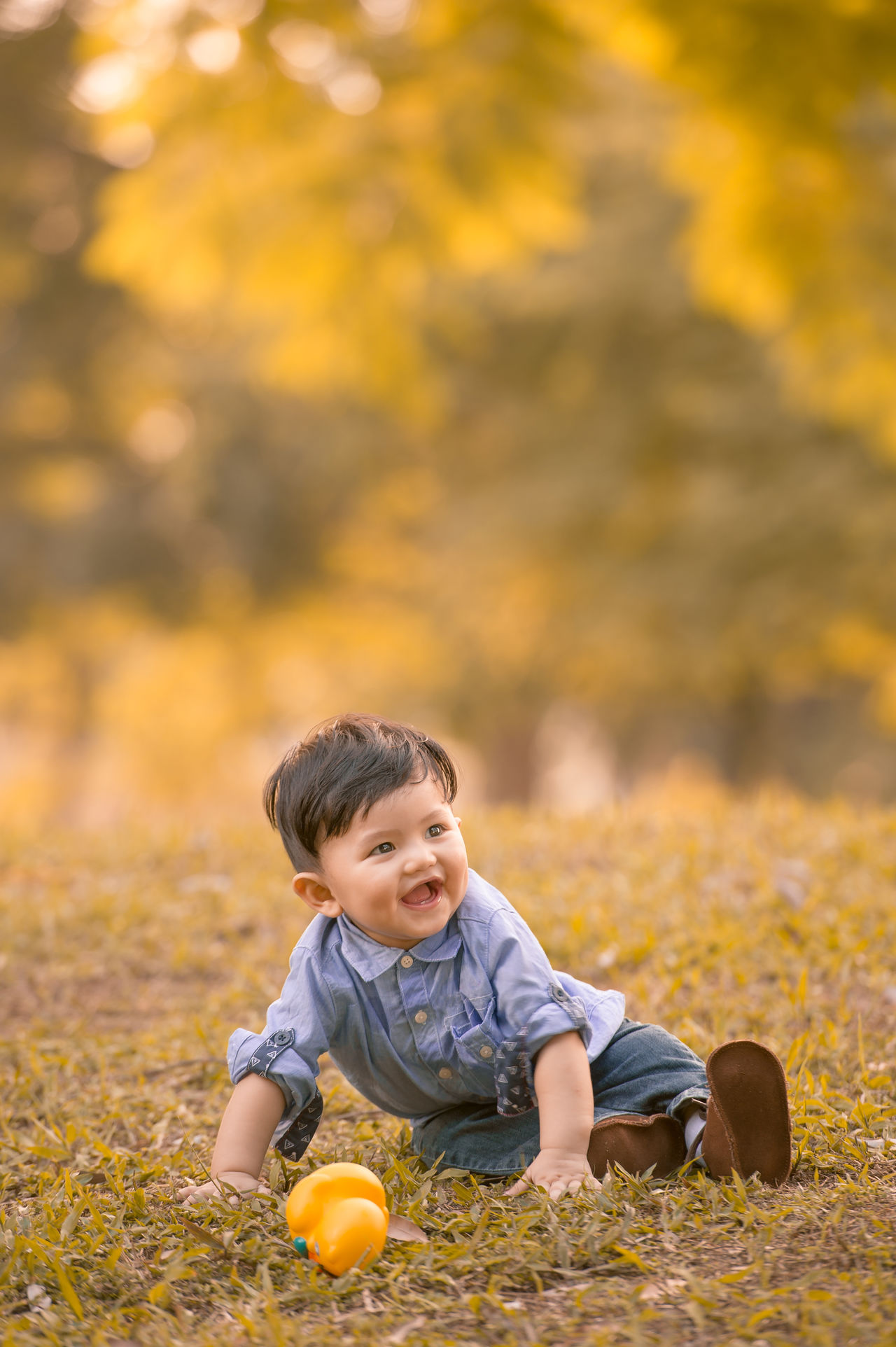 Chinese Boy ASIA Asian  Asian Family Autumn Boys Casual Clothing Change Childhood Chinese Day Full Length Leaf Leisure Activity Lifestyles Looking At Camera Nature One Person Orange Color Outdoors Playing Portrait Real People Sitting Smiling Yellow