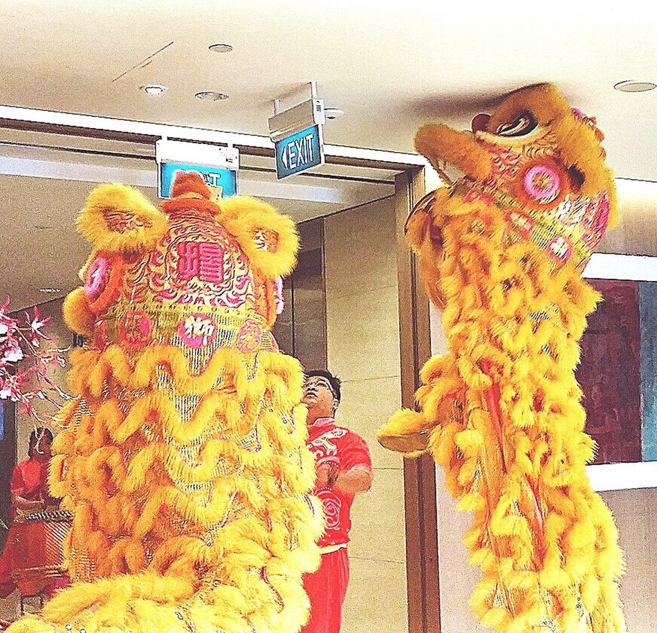 Lions reaching for the greens 採 青 Plucking The Greens Office Singapore Chinese Culture Chinese New Year