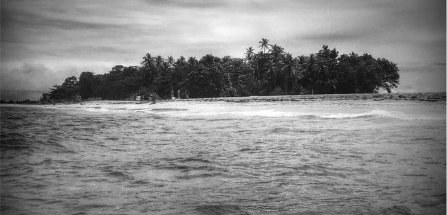Black and White Island Tranquil Scene Water Waterfront Beauty In Nature Shore Deserted Beach Desertedisland Bocas Del Toro Panamá Panamabeach Travel Travel Photography Travel Destinations