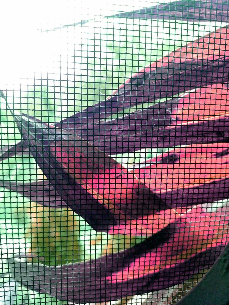 Leaves🌿 Pattern No People Netting Close-up Backgrounds Indoors  Day Sky Millennial Pink Smartphonephotography Mobile Photography
