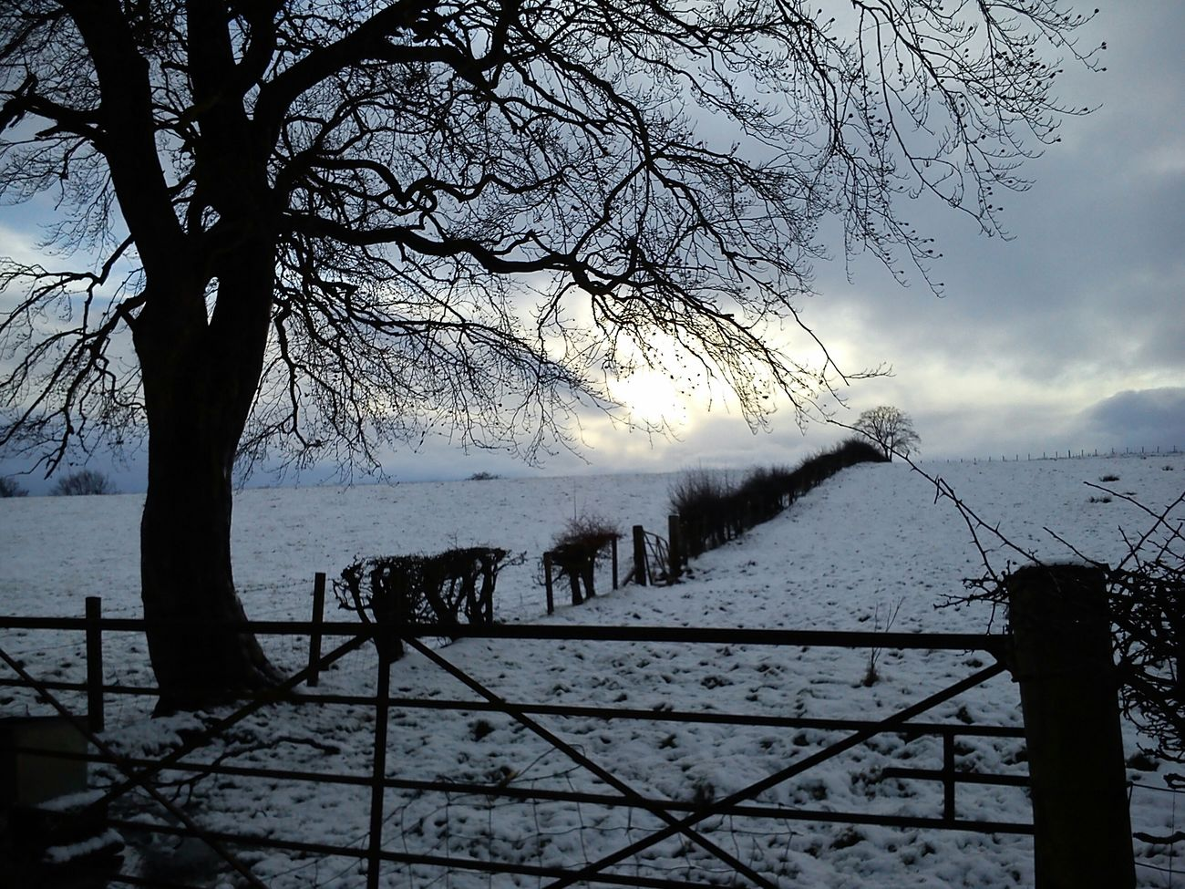 An old winter scene I once saw. Photographs By LauraL LauraLightbodysnaps