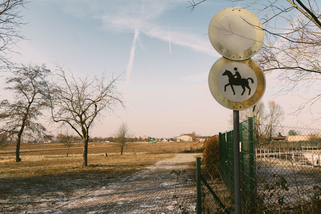 No thoroughfare! Forbidden Bare Tree Communication Day Guidance Horse Landscape Nature No People No Thoroughfare Not Aloud Outdoors Prohibition Sign Riding Road Road Sign Rural Scene Sky Text Transportation Tree