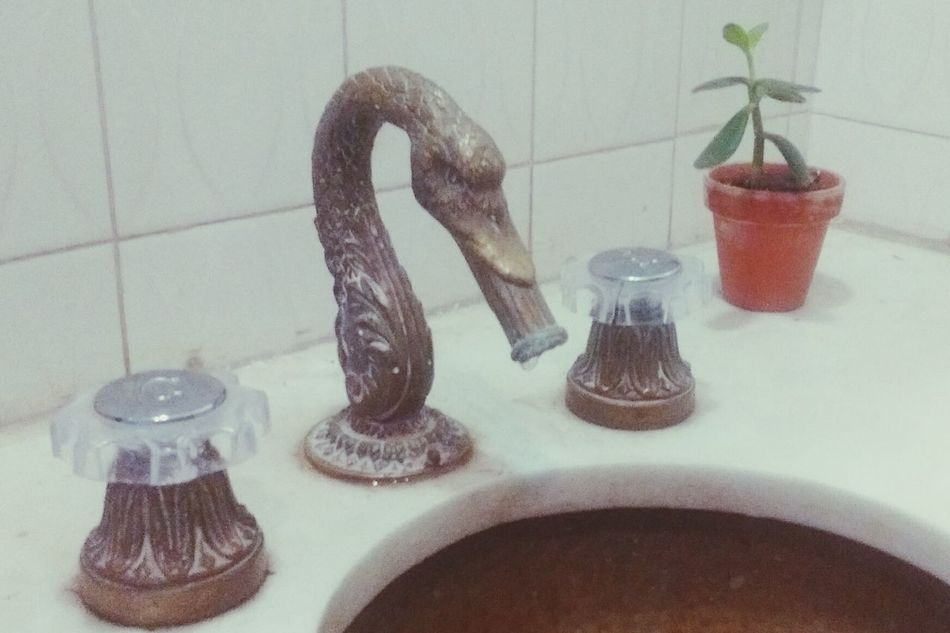 Bathroom.. Gameofthrones Game Of Thrones Mother Of Dragons Bathroom