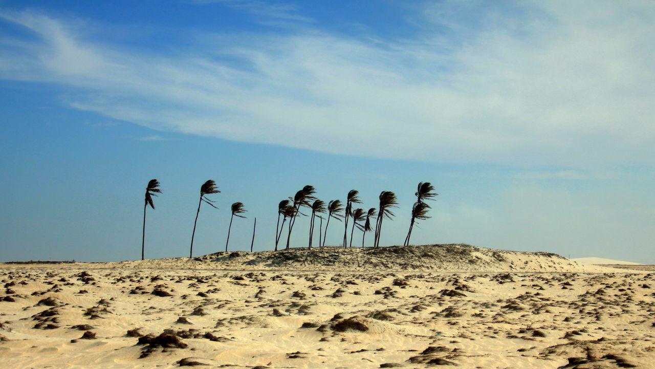 Arid Climate Ceará Ceará-Brasil Day Jeri Jericoacoara Jericoacoara - CE Nature No People Outdoors Sand Sand Dune Scenics