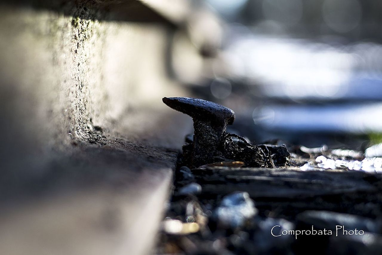 metal, selective focus, close-up, no people, day, rusty, outdoors