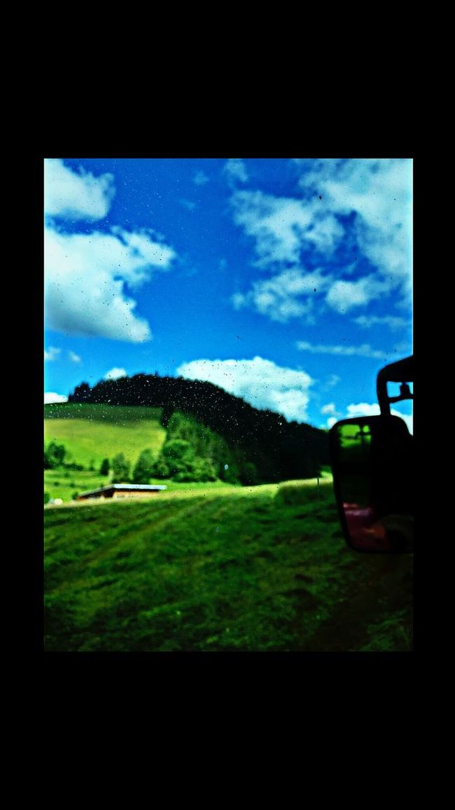 Soaking Up The Sun Hugging A Tree Check This Out Bauernhof IPhoneography Taking Photos Blackforest Clouds And Sky Nature Green