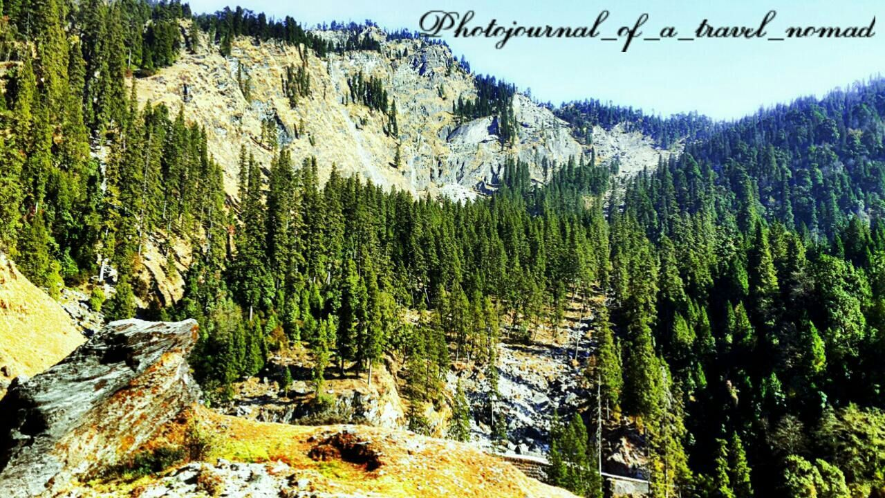 The ever changing mountain glades ... Travel Photography Seasons And Changing Landscapes Nature_collection Landscape_collection EyeEmNatureLover Melancholic Landscapes EyeEm Nature Lover Shutterbug_travels My Photography. ❤ Natureloverforlife Holiday Excursions BackpackersMemories