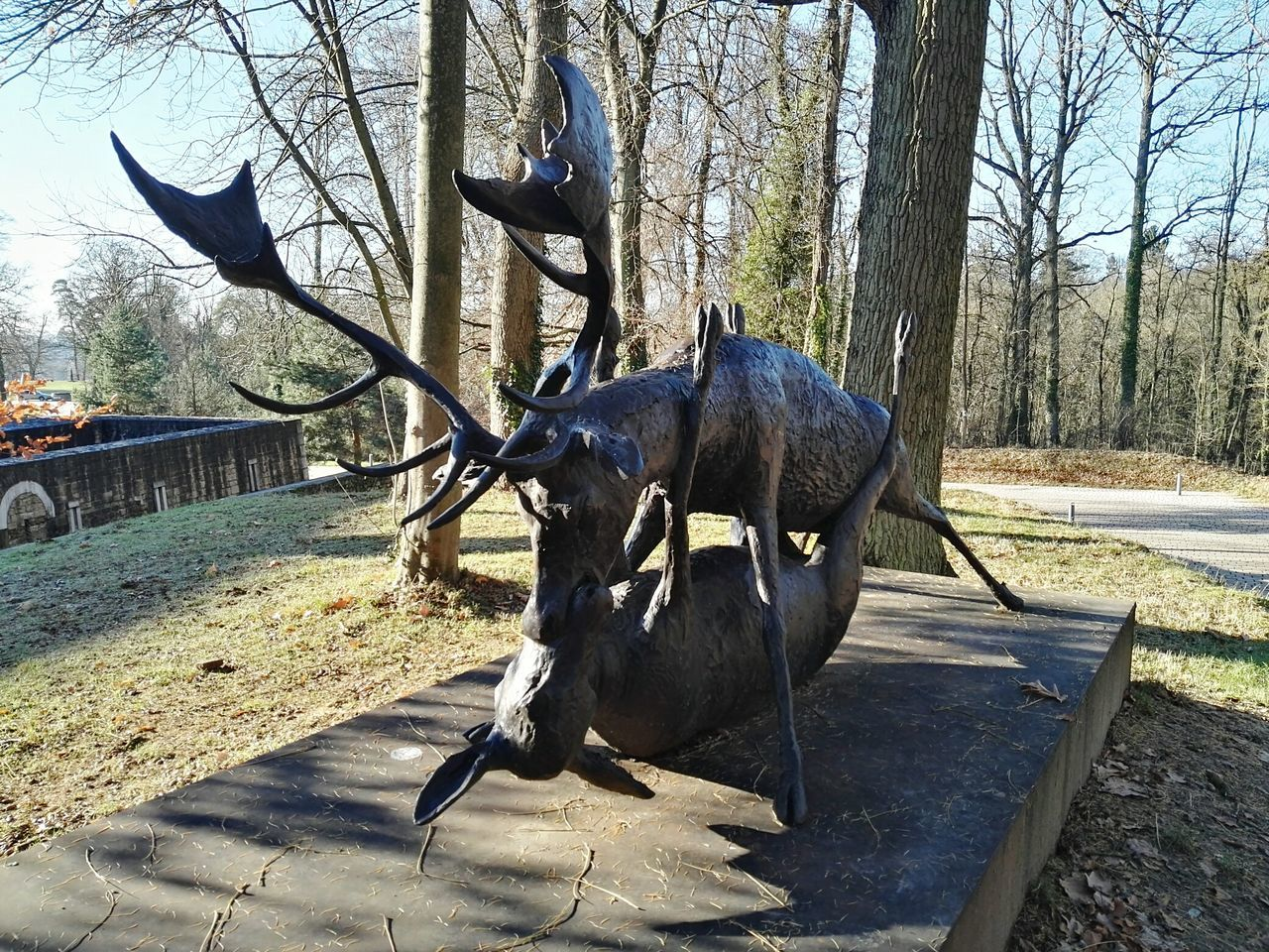 Capture Luxembourg Tree Animal Themes One Animal Outdoors Mammal Day Sunlight No People Domestic Animals Nature Sky Luxembourg Streetphotography Luxembourg Garden Luxembourg_Collection Deer ♥♥ Deer Moments Statue Statues Mudam Original Artwork First Thing I Saw In Luxembourg Pure Love