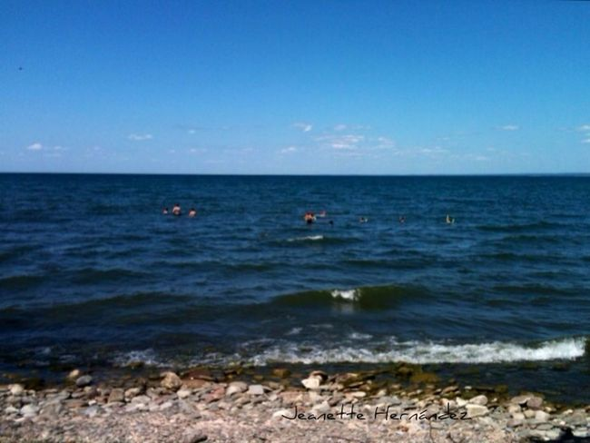Lake Ontario Bluffs StreamzooPics Streamzoofamily