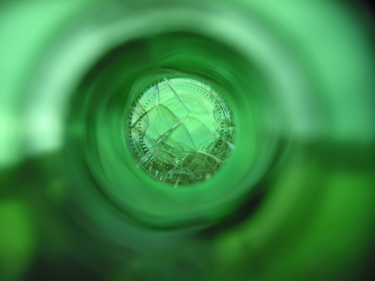 green color, close-up, selective focus, no people, indoors, day