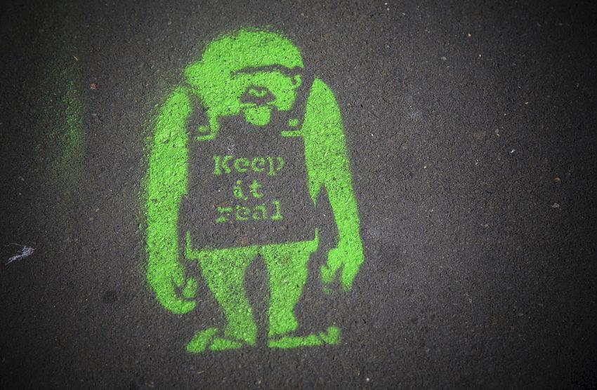 Keep It Real Ape Close-up Communication Full Frame Green Green Color Green Color Ground Keep It Real Monkey Outdoors Pavement Pavementporn Real Sandwich Board Street Symbol Tarmac