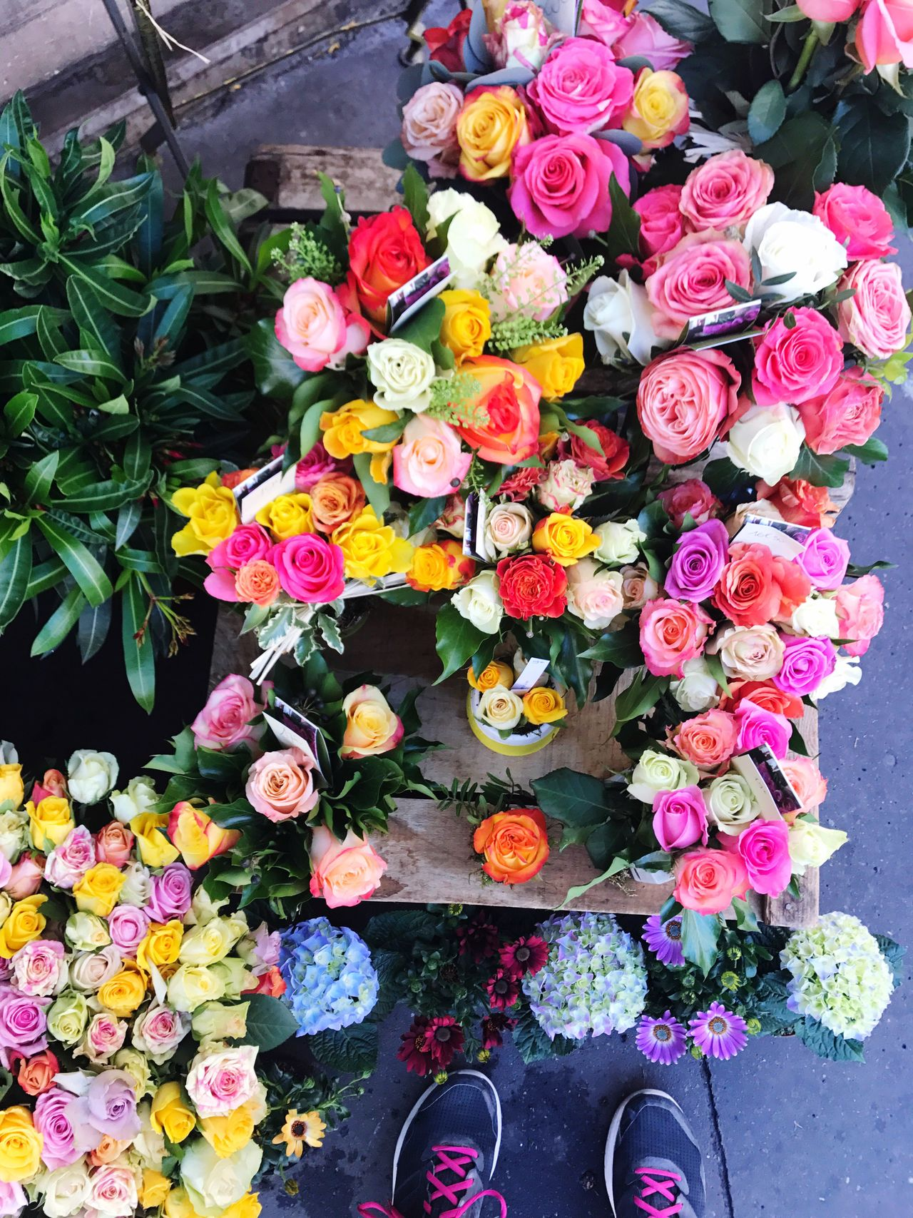 Flower High Angle View Petal Shoe Multi Colored Variation Freshness Human Leg Directly Above Fragility Nature Low Section Flower Head Day Bouquet Choice Beauty In Nature Outdoors Flower Shop Plant Out Of The Box