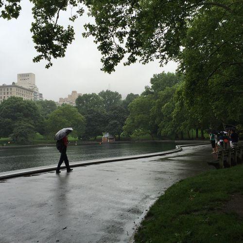 Relaxing at Central Park Leisure Activity Rain Rainy Days Lake Lake View New York City New York Umbrella