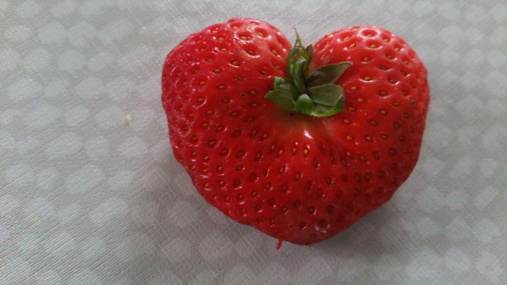 Healthy Eating Getting Inspired Taking Photos Popular Photos Fresas Salvajes Corazón...!!! First Eyeem Photo Enjoying Life Strawberry