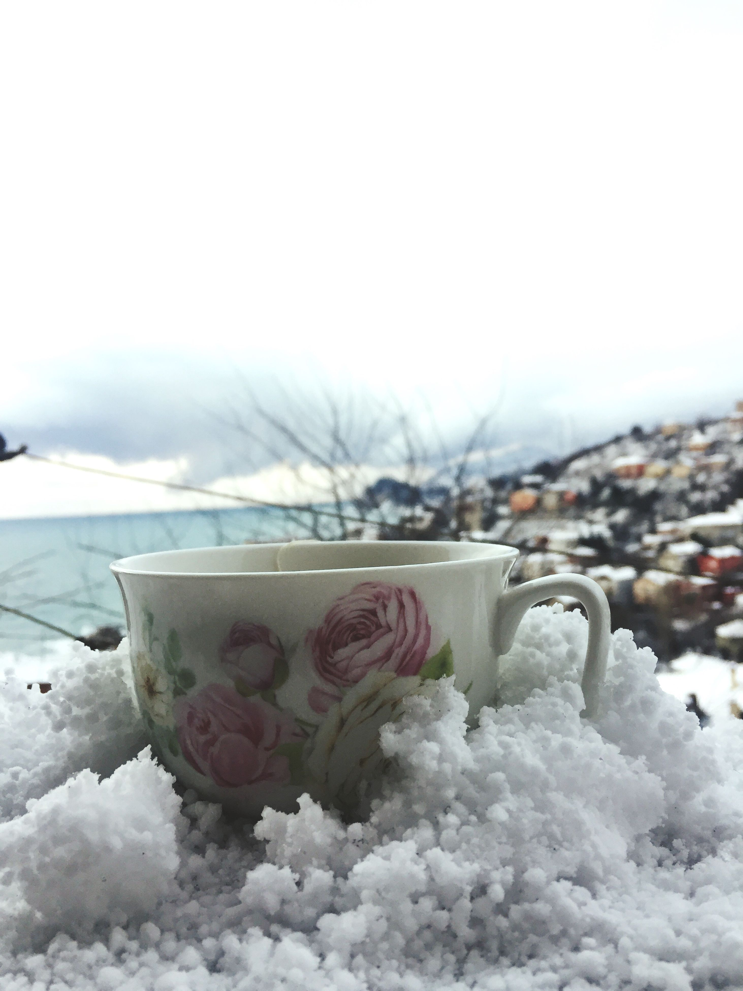 winter, snow, cold temperature, no people, nature, day, close-up, sky, outdoors, freshness