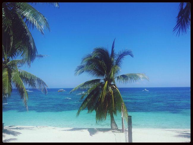 Paradise Bohol Alona