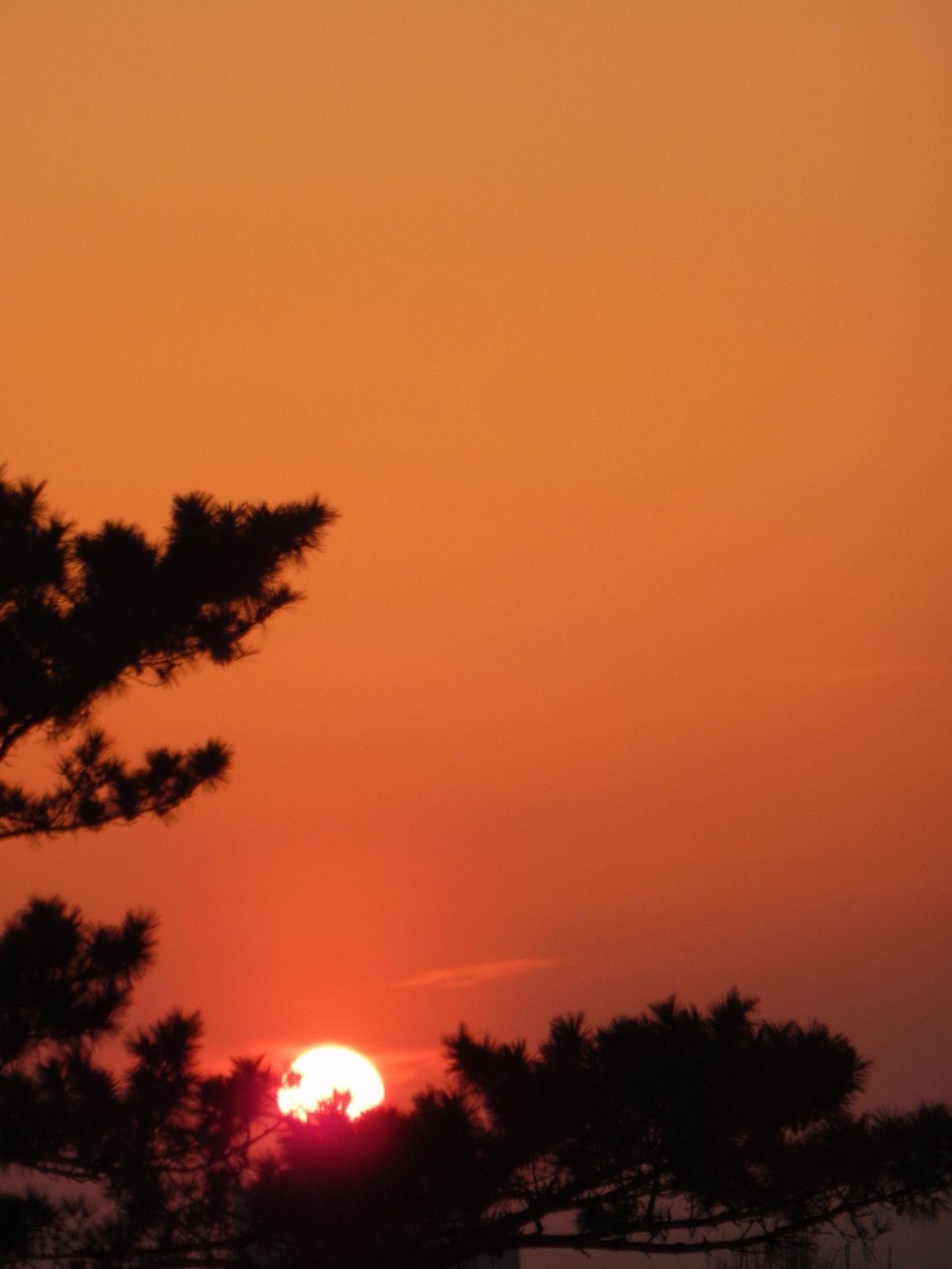 Sun Set NIKON S800c