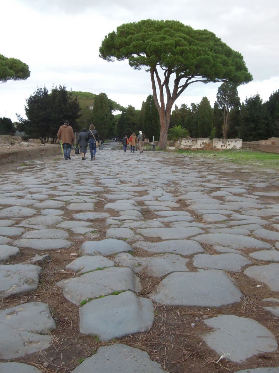 Ancient Archeology Bouldering Built To Last Cobblestone Durability Ostia Antica Pavement Persistence  Road Robust Rome Solid Traces Tree