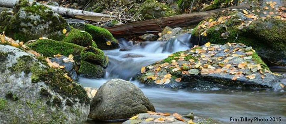 Fall Colors Creek Water Naramata